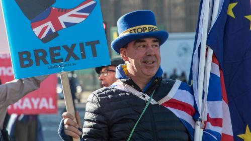 """""""Il est infatigable"""" : Steve Bray, l'homme qui braille """"Stop Brexit !"""" devant Westminster depuis un an et demi"""