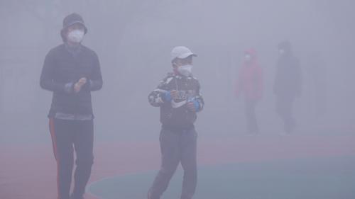 Pollution de l'air : une nouvelle étude revoit le nombre de morts à la hausse