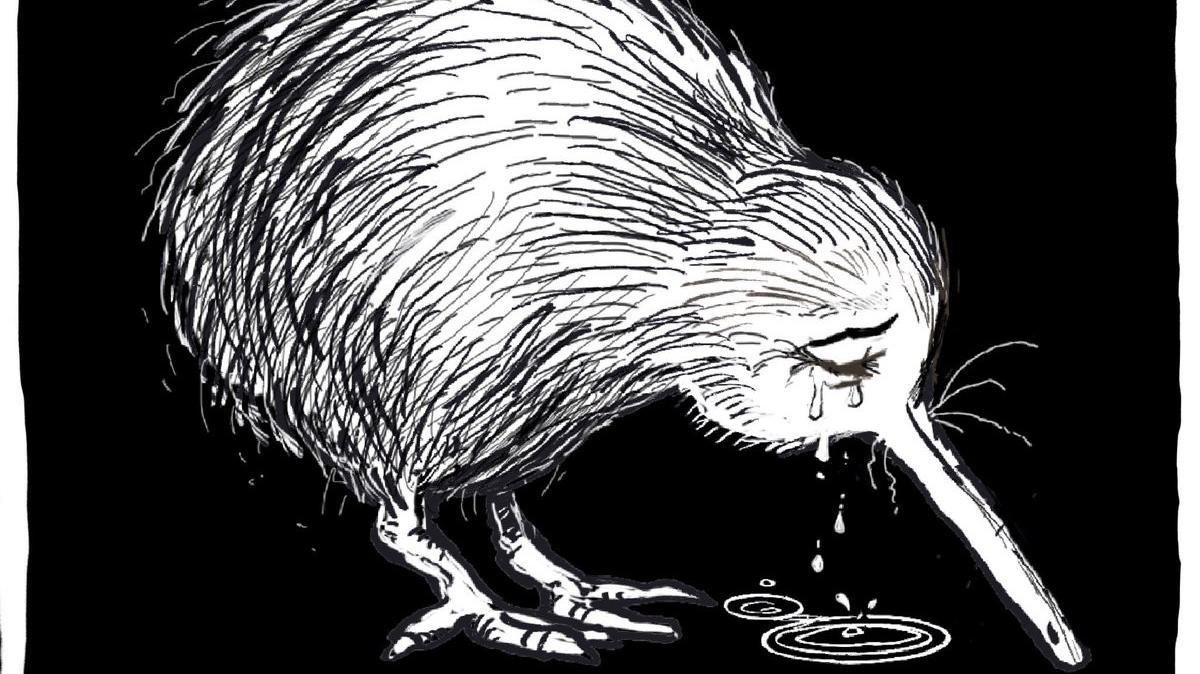 Attentat Nouvelle Zelande: Attentats à Christchurch : Un Kiwi En Pleurs, Symbole D