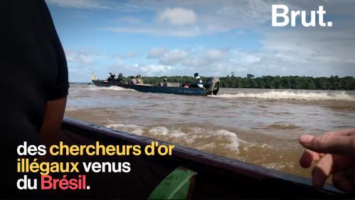 VIDEO. En Guyane, les chercheurs d'or menacent la biodiversité et les peuples autochtones