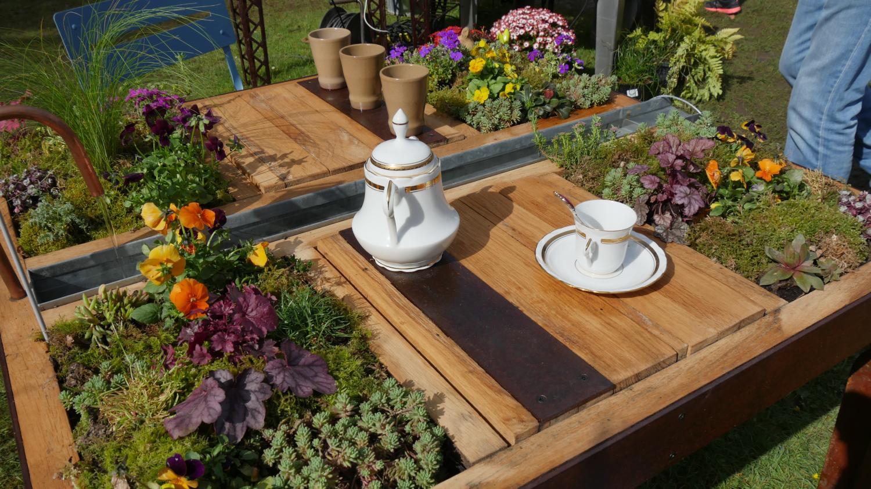 jardin des mini jardins sur table. Black Bedroom Furniture Sets. Home Design Ideas