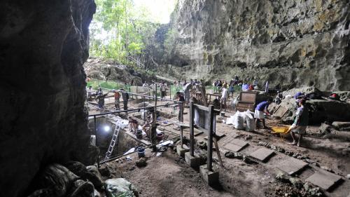Des chercheurs affirment avoir découvert une nouvelle espèce humaine aux Philippines