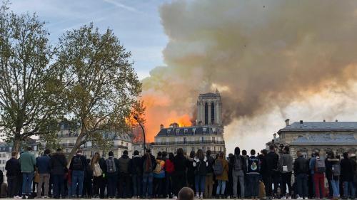"""""""Notre-Dame, c'est l'incendie de trop"""": pourquoi les historiens de l'art et spécialistes du patrimoine sont en colère"""