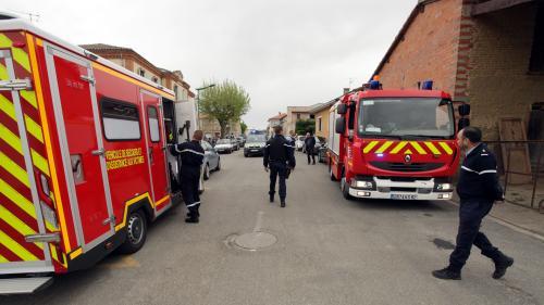 """Tarn-et-Garonne : la """"faiblesse des racines"""" en cause dans la chute d'un arbre dans une école"""