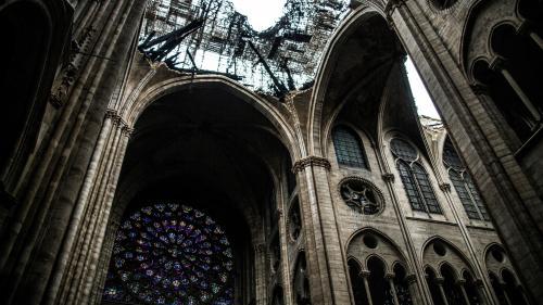 Dons pour Notre-Dame : particuliers ou entreprises, qui sont les plus généreux ?