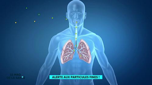 """Pollution : """"Les particules fines pénètrent très loin dans les voies respiratoires"""""""