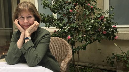 "INTERVIEW Posy Simmonds : ""Cassandra Darke"", le roman graphique de la Grande-Bretagne du Brexit"