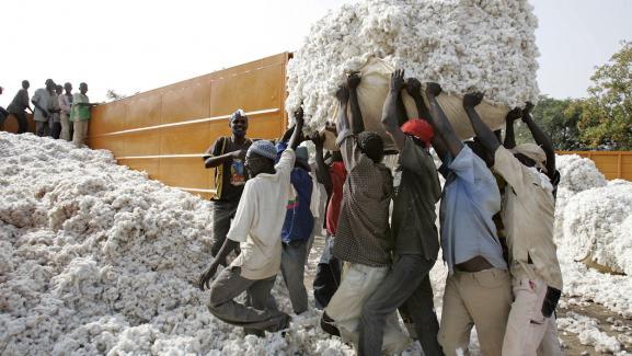 Chargement du coton à Dano au Burkina, autre grand pays producteur de la région avec le Mali.