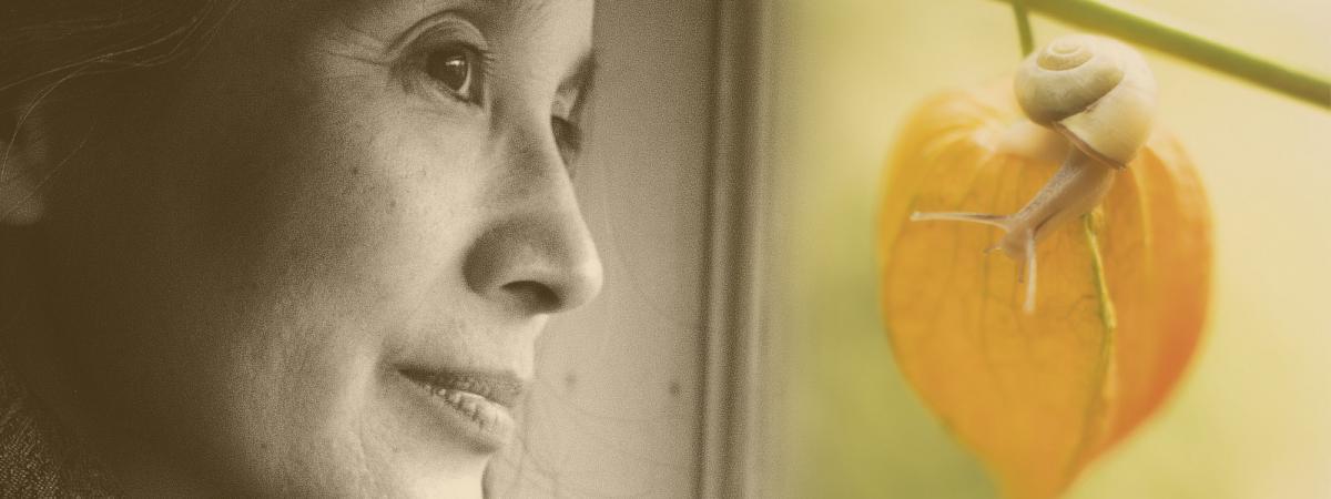 """Aki Shimazaki et extrait de la couverture de \""""Maïmaï\"""", son dernir roman (Actes Sud)"""