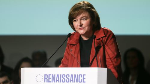 Européennes : la campagne de Nathalie Loiseau, des couacs en série