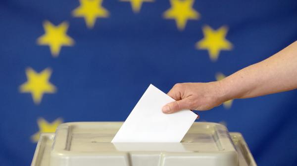Européennes : une campagne confisquée par certains partis ?