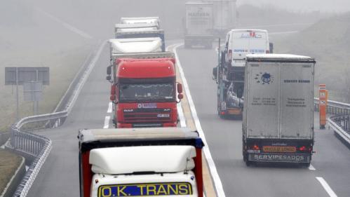 VIDEO. Poids lourds : nouveau scandale de fraude aux systèmes antipollution ?