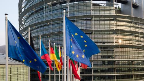 Européennes : quel est le rôle des députés que l'on va élire?
