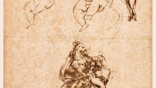 Léonard de Vinci : Bayonne prête six de ses dessins pour la rétrospective au Louvre