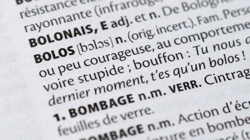 """Larousse 2020 : """"Le dictionnaire est une photographie de l'évolution de la langue et de la société"""""""
