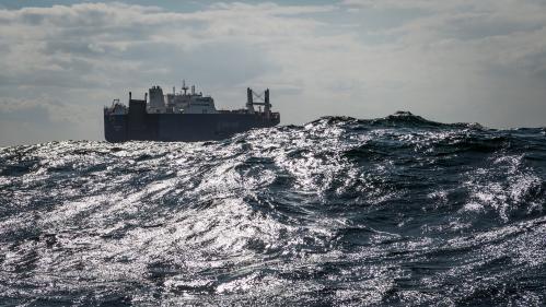 Yémen : le cargo saoudien qui devait charger des armes ne fera finalement pas d'escale au Havre