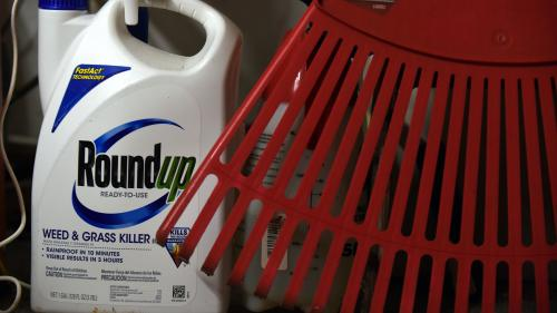 Monsanto condamné à verser deux milliards de dollars à un couple d'Américains atteints d'un cancer attribué au Roundup