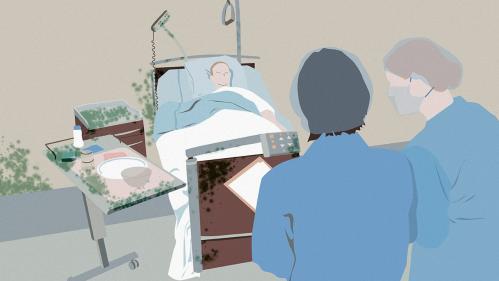 """Candida auris, le """"champignon tueur des hôpitaux"""", mérite-t-il vraiment son terrifiant surnom ?"""