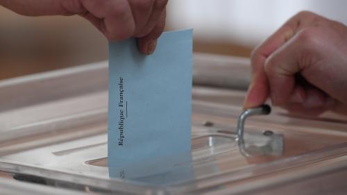 Européennes : certaines listes électorales pourraient ne pas être à jour pour le scrutin
