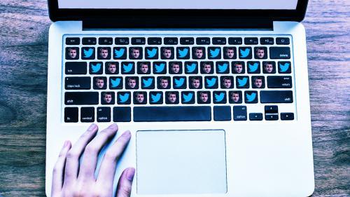 Hyperactifs, souvent anonymes et virulents : qui sont les soldats macronistes sur Twitter ?