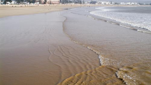 """Les plages du Maroc vont-elles survivre aux """"mafias du sable"""" ?   https://www.francetvinfo.fr/monde/afrique/maroc/les-plages-du-maroc-vont-elles-survivre-aux-mafias-du-sable_3449149.html…pic.twitter.com/AWDp3t16Bu"""