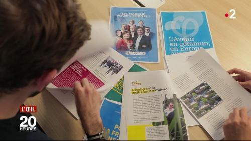 VIDEO. Européennes 2019: des propositions hors-sujet dans les programmes