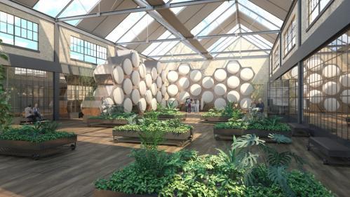 """L'Etat américain de Washington légalise le """"compost humain"""", une alternative écolo à l'inhumation"""