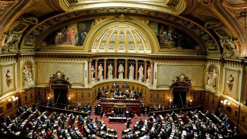 Après l'Assemblée, le Sénat vote à son tour l'instauration d'une taxe sur les géants du numérique