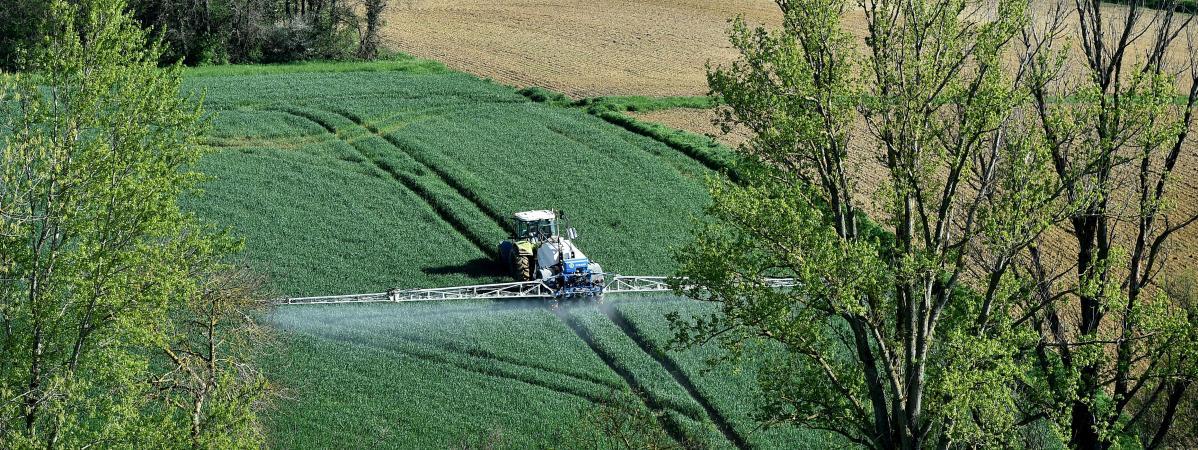 Quelque55 000 hectares de terres agricoles changent d\'usage chaque année, selon laFNSafer.