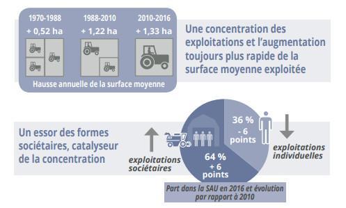 Le marché des terres agricoles est de plus en plus financiarisé, souligne le bilan annuel de l\'opérateur FNSafer.
