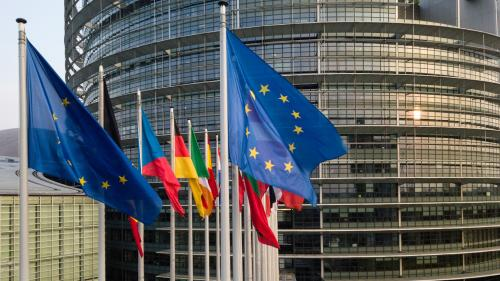 Européennes : le nouveau visage du Parlement