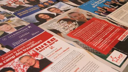 Elections européennes : ces mesures hors sujet proposées par les candidats lors de la campagne