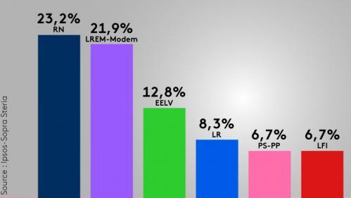 Européennes : le RN devance LREM, EELV crée la surprise et se place en 3e position devant LR, selon notre estimation Ipsos/Sopra Steria