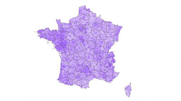 CARTE. Résultats des élections européennes 2019 : la France du vote La République en marche