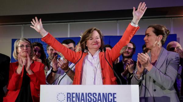 Élections européennes : le RN bat LREM, EELV crée la surprise