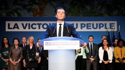 Elections européennes : pour la première fois, les territoires d'outre-mer placent majoritairement le RN en tête