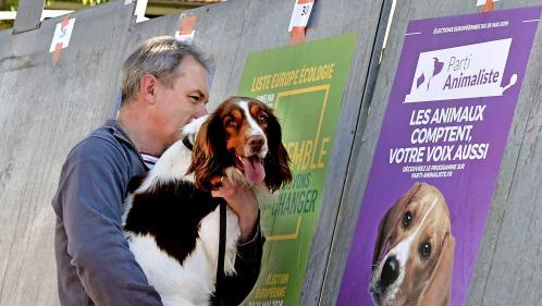 APPEL A TEMOIGNAGES. Vous avez voté pour le Parti animaliste aux européennes? Expliquez-nous votre choix