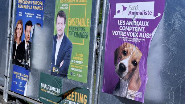 """Européennes : le Parti animaliste, l'UPR, le Parti pirate et la liste des """"gilets jaunes"""" sont-ils vraiment arrivés en tête dans certaines communes ?"""