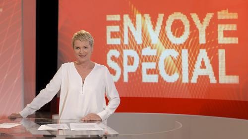 """VIDEO. Pollution, enquête sur l'affaire Benalla... Regardez l'émission """"Envoyé spécial"""""""