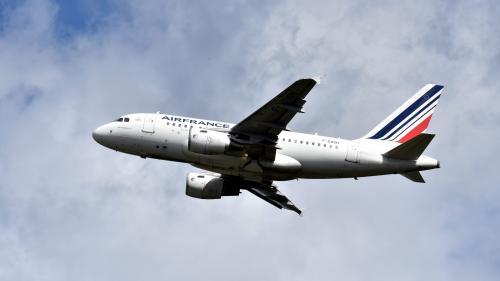 Des députés veulent interdire l'avion sur les courts trajets en France