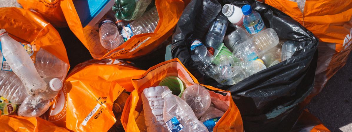 Saint-Malo : opération plages propres à l'occasion de la journée mondiale du nettoyage
