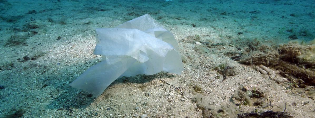 La France largement épinglée par le rapport de WWF sur la pollution plastique en Méditerranée