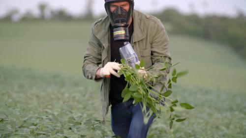 """REPLAY. Environnement : regardez """"Paraguay, les cultures empoisonnées"""" de la série documentaire """"Vert de rage"""""""