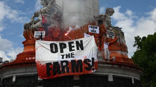 Des militants antispécistes aspergent la statue de la République de faux sang