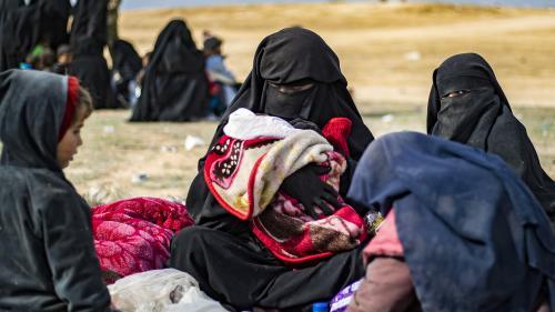 Syrie : douze orphelins de familles jihadistes atterrissent en France après avoir été remis par les Kurdes