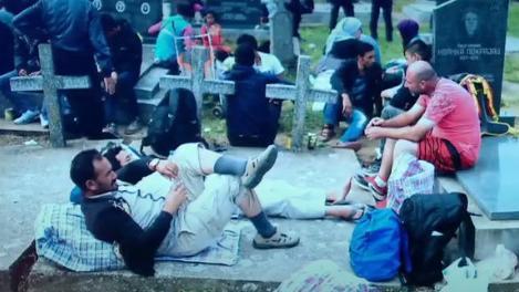 Faux et usage de faux : une photo de migrants dans un cimetière