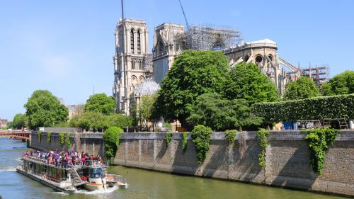 """""""Ça va forcément être beaucoup d'émotion"""": une messe est célébrée à Notre-Dame de Paris pour la première fois depuis l'incendie"""