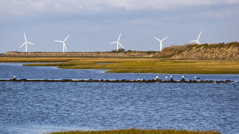 Energies renouvelables : plus d'un quart de la production d'électricité en France - Franceinfo