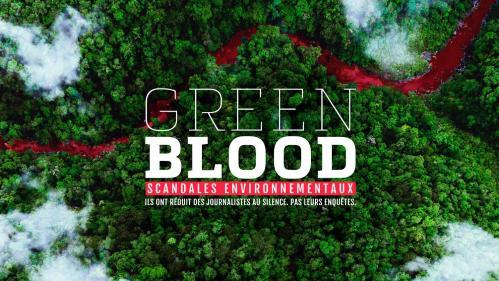 Green Blood Project : une enquête mondiale révèle les crimes de l'industrie minière contre l'environnement