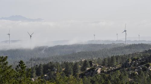 """Climat : des experts demandent des décisions politiques """"plus audacieuses"""" pour favoriser la transition énergétique"""